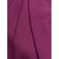 RIB 2/1 purpurinis
